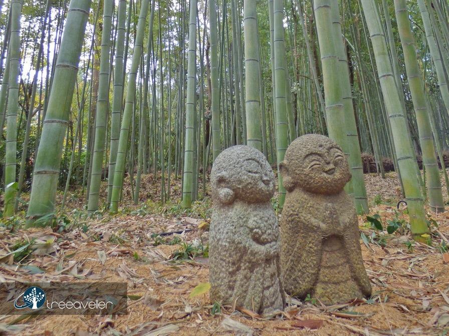 treeaveller-kyoto