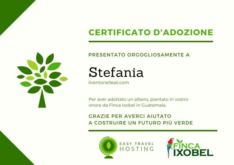 certificato albero il vento nelle ali easy travel hosting ecologico