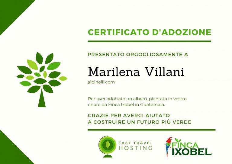 certificato albero easy travel hosting ecologico albinelli.com