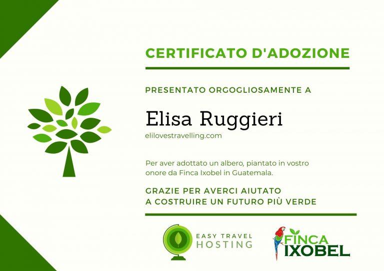 certificato albero easy travel hosting ecologico elilovestravelling.com