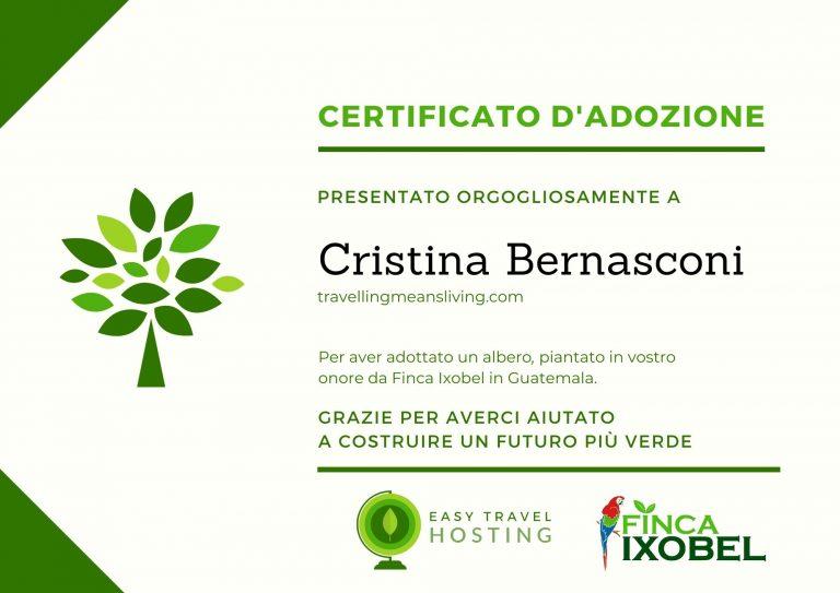 certificato albero easy travel hosting ecologico travellingmeansliving.com